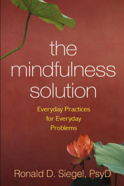Mindfulness Solution Book Cover